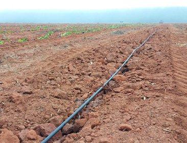 Irrigação será descomplicada por Abel Fonseca, da Hydra Irrigações